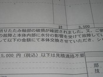 IMG_4307.JPG